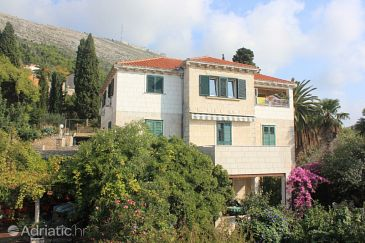 Property Dubrovnik (Dubrovnik) - Accommodation 8582 - Apartments with pebble beach.