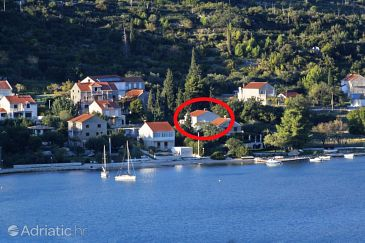 Property Slano (Dubrovnik) - Accommodation 8599 - Apartments near sea with pebble beach.
