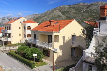 Property Cavtat (Dubrovnik) - Accommodation 8611 - Apartments in Croatia.