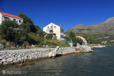 Property Slano (Dubrovnik) - Accommodation 8741 - Apartments near sea.