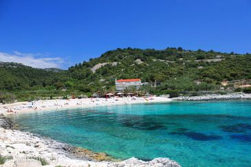 Property Hvar (Hvar) - Accommodation 8785 - Apartments and Rooms near sea with pebble beach.