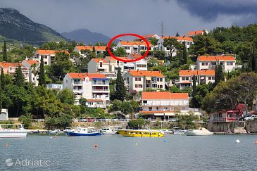 Cavtat, Dubrovnik, Property 8831 - Apartments with pebble beach.