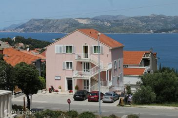 Property Cavtat (Dubrovnik) - Accommodation 8965 - Apartments in Croatia.