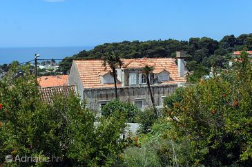 Property Dubrovnik (Dubrovnik) - Accommodation 9023 - Apartments with pebble beach.