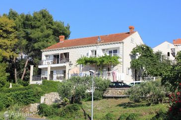 Property Cavtat (Dubrovnik) - Accommodation 9041 - Apartments in Croatia.