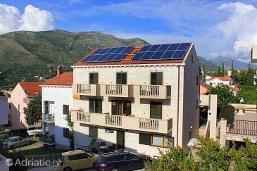 Property Cavtat (Dubrovnik) - Accommodation 9052 - Apartments in Croatia.