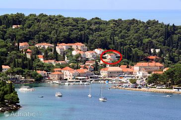 Property Cavtat (Dubrovnik) - Accommodation 9090 - Apartments and Rooms near sea.