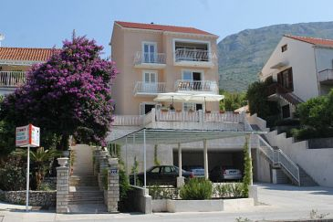 Mlini, Dubrovnik, Property 9105 - Apartments with pebble beach.