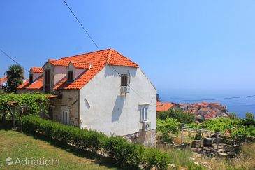 Property Dubrovnik (Dubrovnik) - Accommodation 9117 - Apartments with pebble beach.