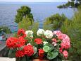 Terrace - view - Apartment A-9141-a - Apartments Prigradica (Korčula) - 9141