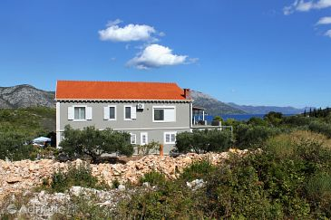 Property Kneža (Korčula) - Accommodation 9167 - Apartments with pebble beach.