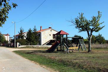 Flengi u rivijeri Poreč (Istra)
