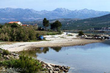 Pridraga - Cuskijaš u rivijeri Novigrad (Sjeverna Dalmacija)