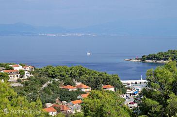 Rogač na otoku Šolta (Srednja Dalmacija)