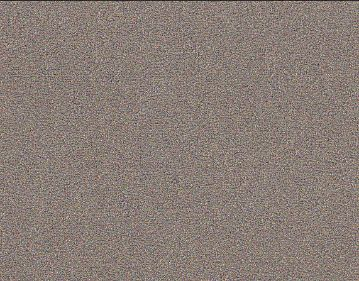 6331.jpg