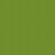 VELUX® Remote Solar (RSL) Roller Blind | 4079-Olive Green