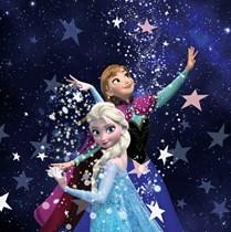 Genuine Velux (DKL) Childrens Blackout Blind   Frozen Anna and Elsa 4656