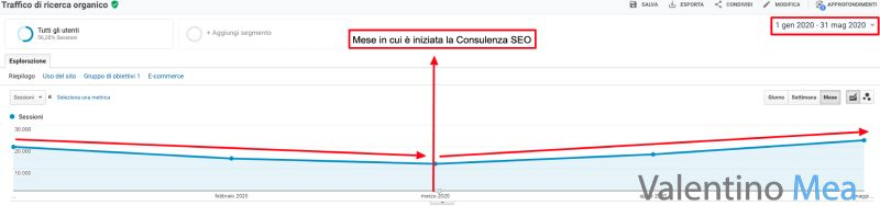 Risultati consulenza SEO Google Panda
