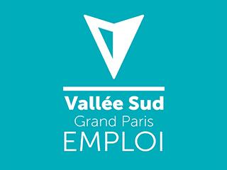 logo de VALLEE SUD EMPLOI
