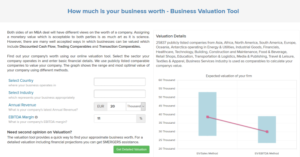 Smergers business valuation calculator