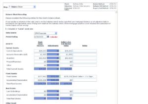 Balance sheet data input