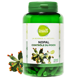 NOPAL-blog.jpg