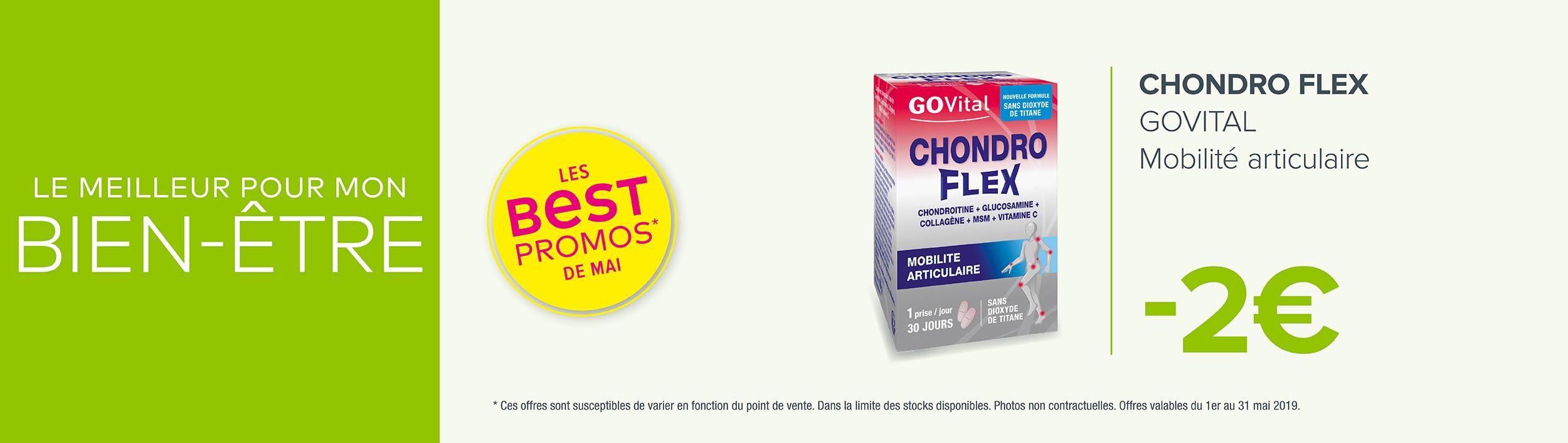 CHONDRO FLEX - GOVITAL / Mobilité articulaire