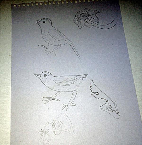 Sophia's sketch
