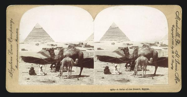 Stereoscopic image of the Pyramids