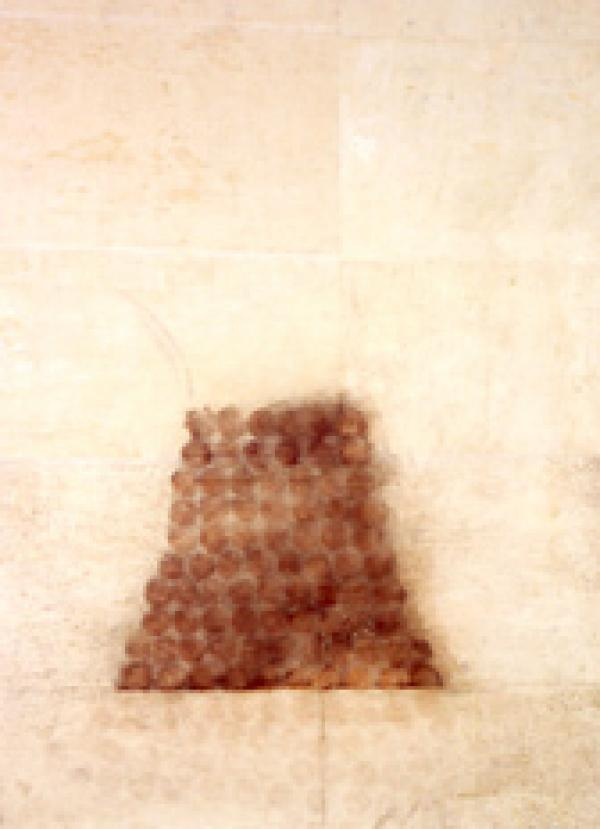 Hive, 196 x 174 cm, pigment on found paper, 1997