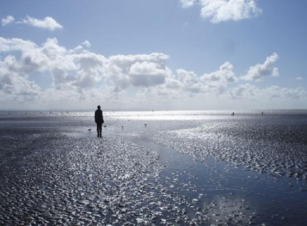 Another Place by Antony Gormley.