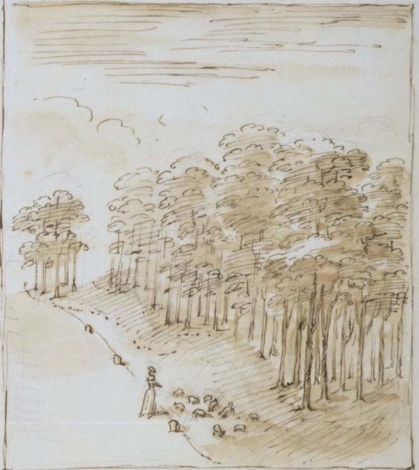 Landscape with sheep at Esher, drawing by William Kent, about 1730-35. Museum number  E.391-1986
