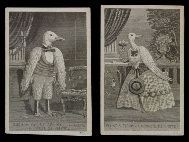 Two satirical prints showing a goose and a duck posing for carte de visite photographs
