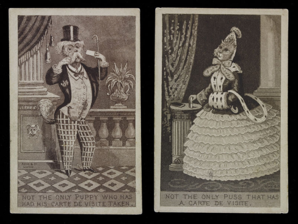 Two satirical prints showing a dog and a cat posing for carte de visite photographs