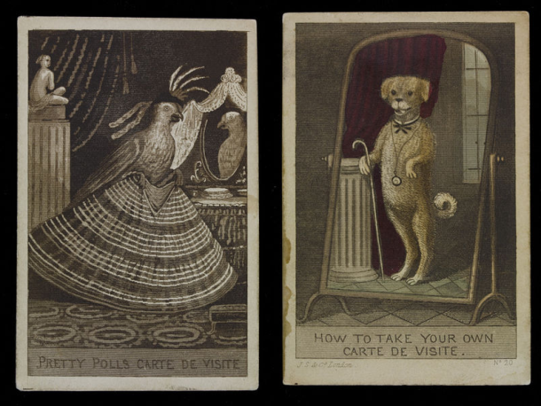 Two satirical prints showing a parrot and a dog posing for carte de visite photographs