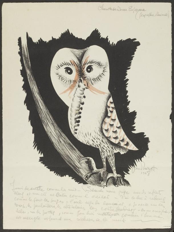 'Chouette de Bonne Esperance', proof illustration from 'Géographie Animale', hand-coloured lithograph by Jean Lurçat, France, 1948. Museum no. E.246-1994. ©Jean Lurçat/Victoria and Albert Museum.