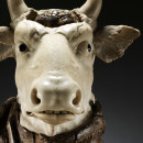 60-1882  Statue Head of an ox; Marble statue of the head of an ox on a tree trunk, (North Italy) probably Padua, about 1650-1700 Padua 2nd half 17th century Marble and wood. In a report dated 6 February 2015, analysis of the wood identified it as an alpine pine, probably Pinus cembra.