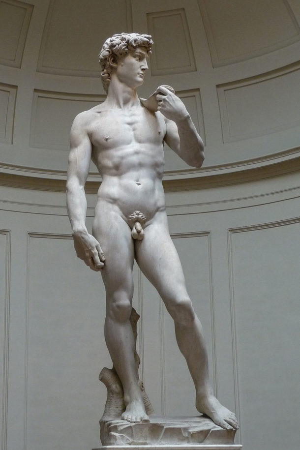 Michelangelo's David, 1501-1504, Galleria dell'Accademia (Florence). Photograph by Jörg Bittner Unna