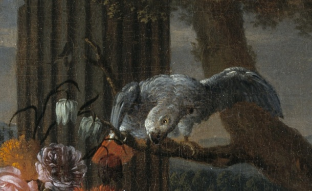 DETAIL OF PARROT: STILL LIFE WITH FRUIT, A PARROT AND MRMOSETS  Signed on stone slab lower right Joan Paulo Gillemans f Canvas  Museum no. 513-1870 Bequeathed by John M. Parsons