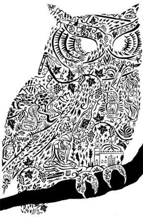 BlindOwl3