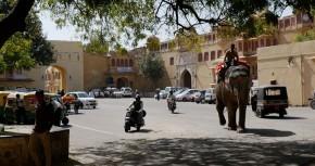 Jaipur_1[1]