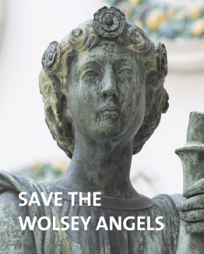 Save the Wolsey Angels