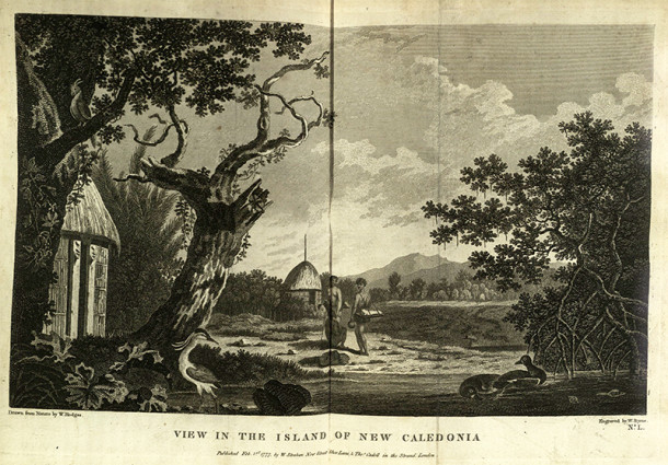 View of New Caledonia with birds in the foreground