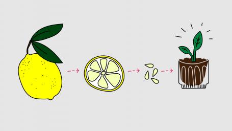 Viisi vinkkiä, joilla saat ajan kulkemaan nopeammin ja vihreämmin!