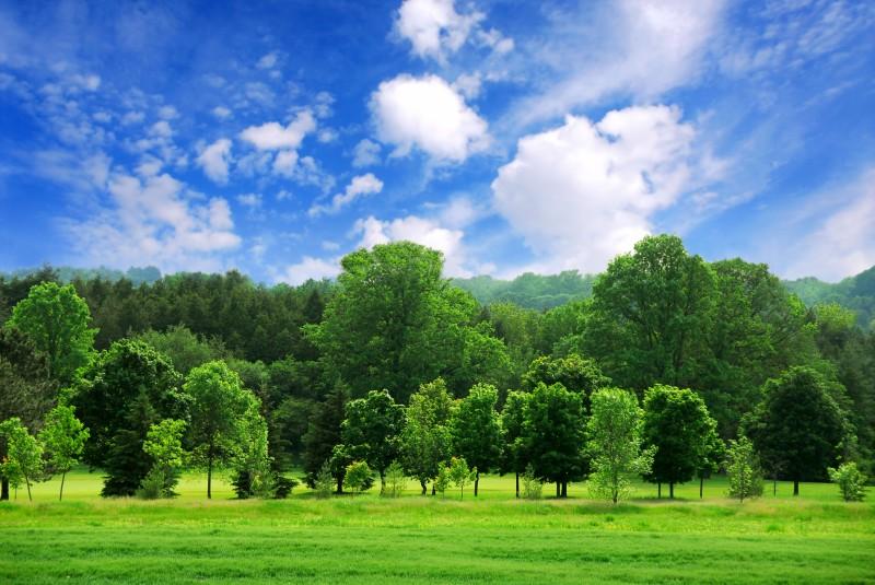 Ilmastolupaukset linjassa EU:n tavoitteiden kanssa