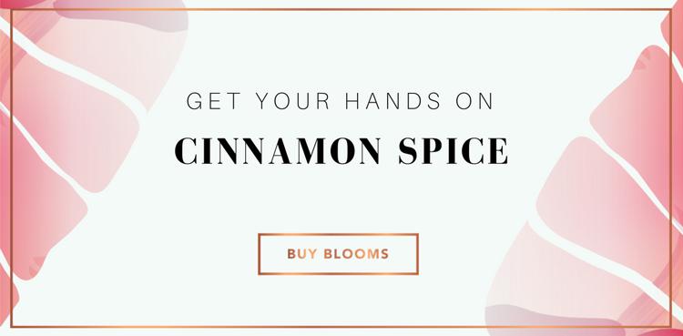 Buy Cinnamon Spice Letterbox flowers