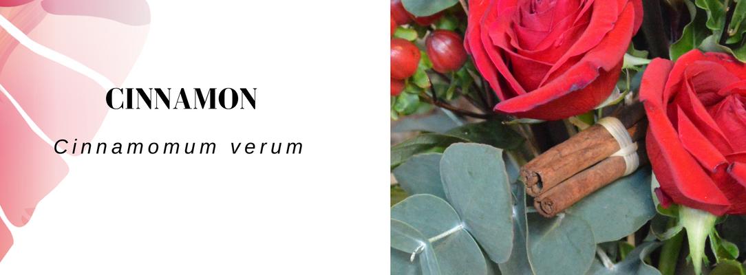 Cinnamon Vela letterbox flowers