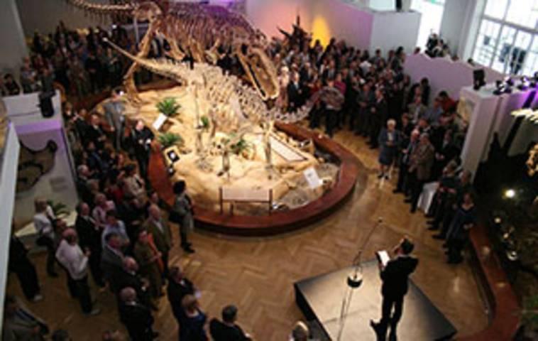 Luonnontieteellinen museo