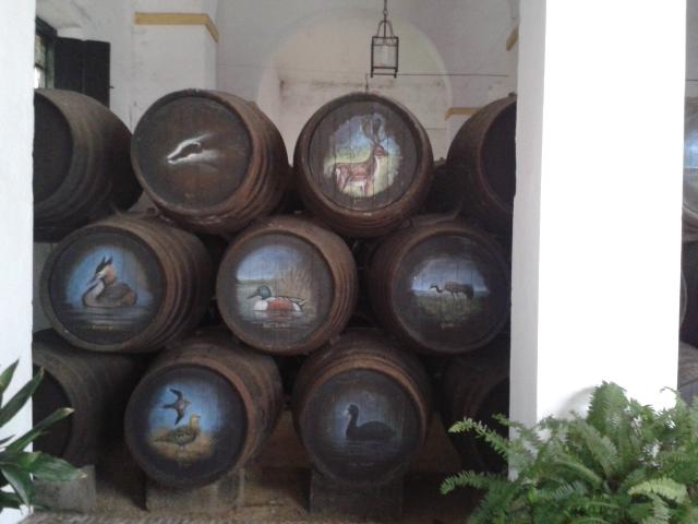 Colección Manzanilla en Rama