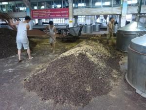 Montículo de fermentación abierto donde fermenta el sorgo